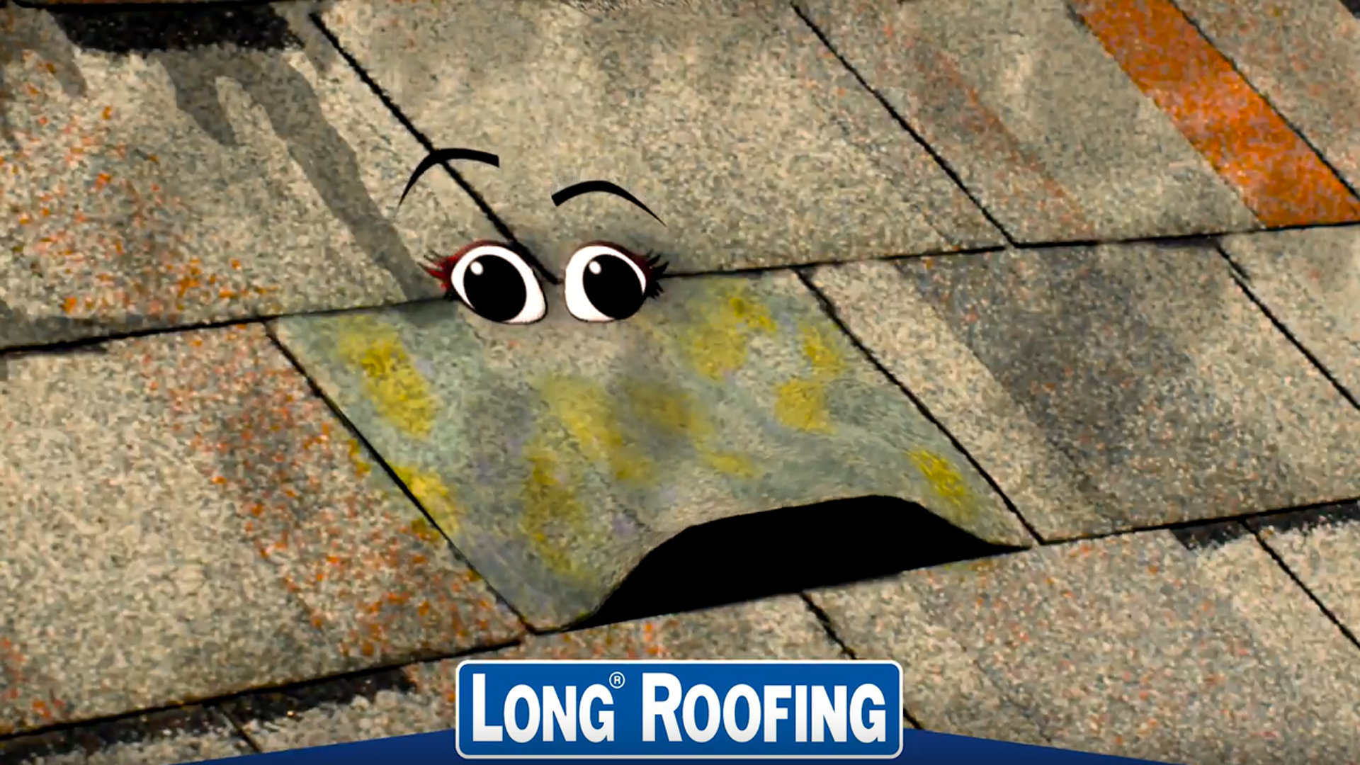 Long Roofing Commercial Image